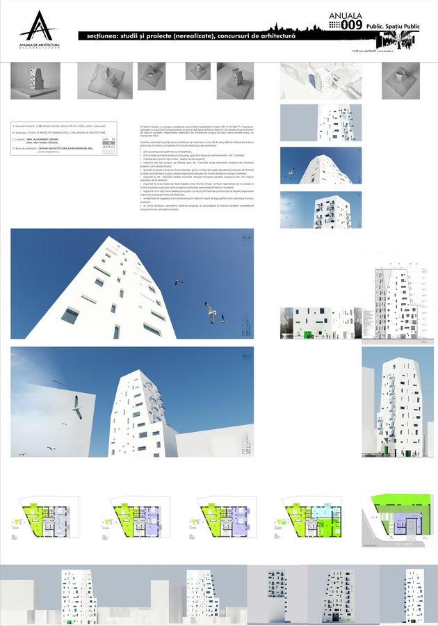 art_stone29_crisan-architecture_anuala1-2009